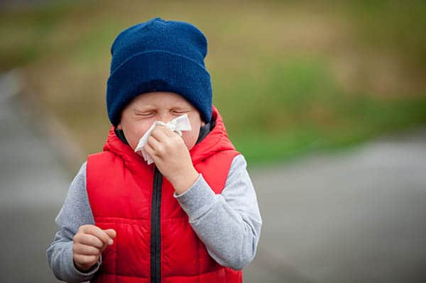 Remember the Flu?